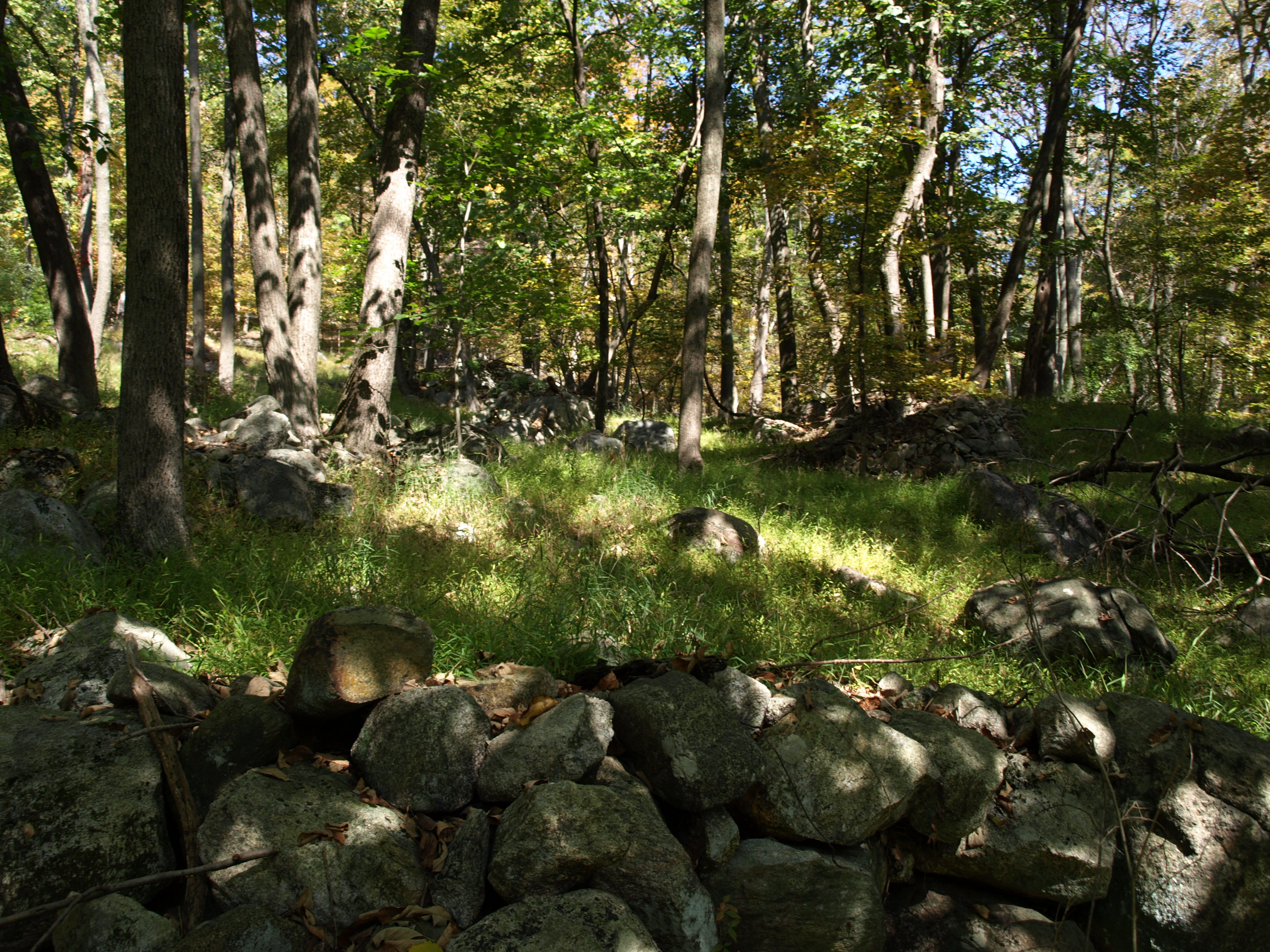 Ramapo Stone Fences